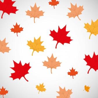 カナダの日カエデの葉の背景