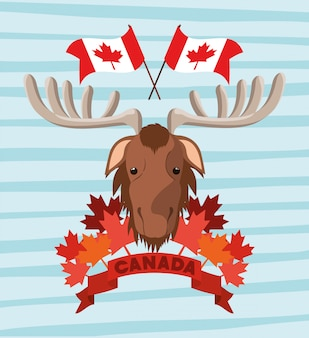 Canada day with moose and maple leaf