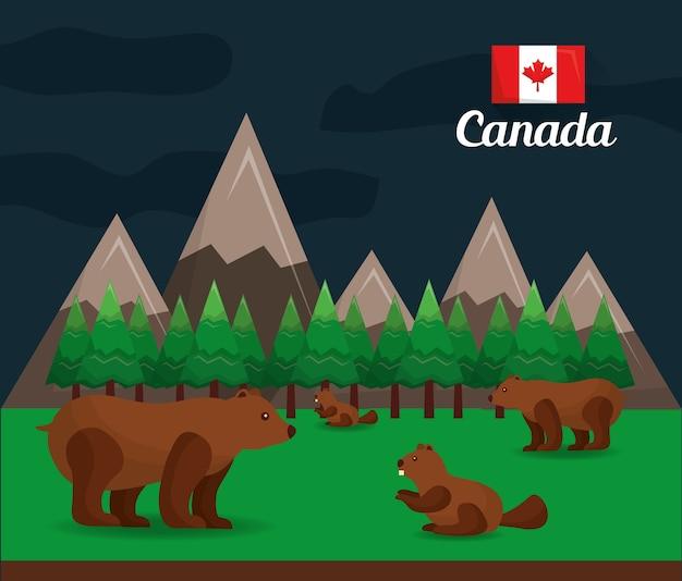カナダの森のグリズリービーバー自然保護