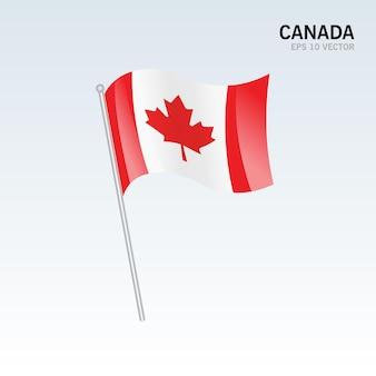 캐나다 회색에 고립 된 깃발을 흔들며