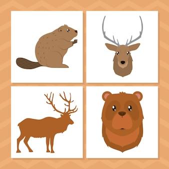 カナダの動物セットデザイン