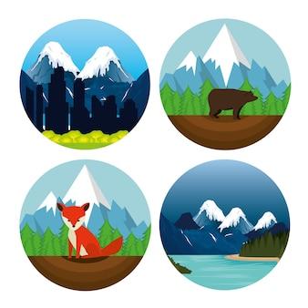 Канадский пейзаж сцена значок векторной иллюстрации дизайн
