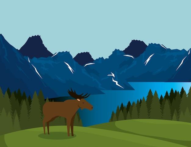 ムースシーンのあるカナダ風景