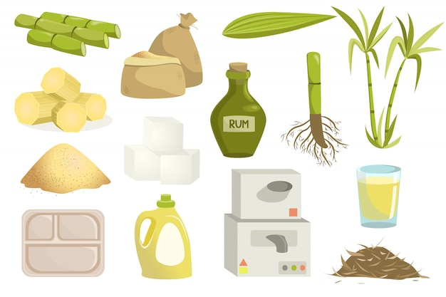 Cane sugar production set