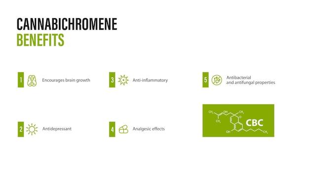 Cannabichromene benefits, white banner with infographic and cannabichromene chemical formula