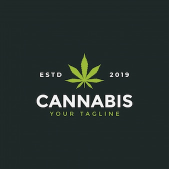 Cannabis leaf logo design template illustration