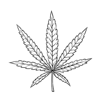 Cannabis leaf in vintage engraved style for smoking or medicine