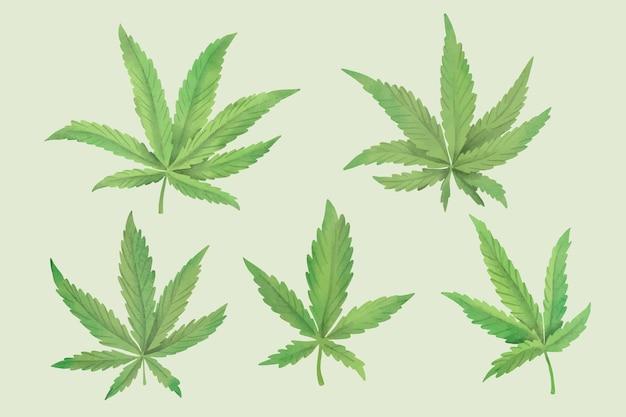 수채화 컬렉션에 대마초 잎