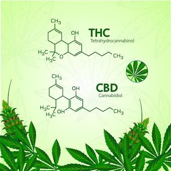Cannabis for medical  illustration.