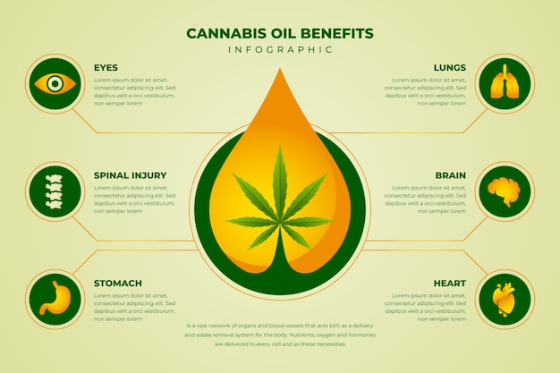 Инфографический шаблон преимущества масла каннабиса