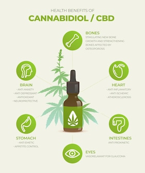 Cannabis oil benefits infographic