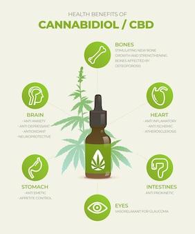 Infografica sui benefici dell'olio di cannabis