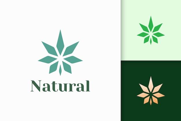 마약이나 허브를 위한 간단하고 현대적인 대마초 또는 마리화나 로고 프리미엄 벡터