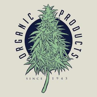 대마초 식물 유기농 제품 로고, 마스코트 상품 티셔츠, 스티커 및 라벨 디자인, 포스터, 인사말 카드 광고 비즈니스 회사 또는 브랜드를 위한 벡터 삽화.