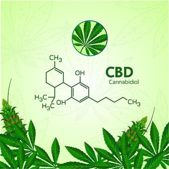 多くの利点のイラストと大麻。