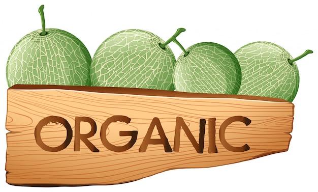 Cantaloupe fruits and organic sign