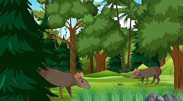 많은 나무가 있는 숲이나 열대우림 장면의 카피바라 가족