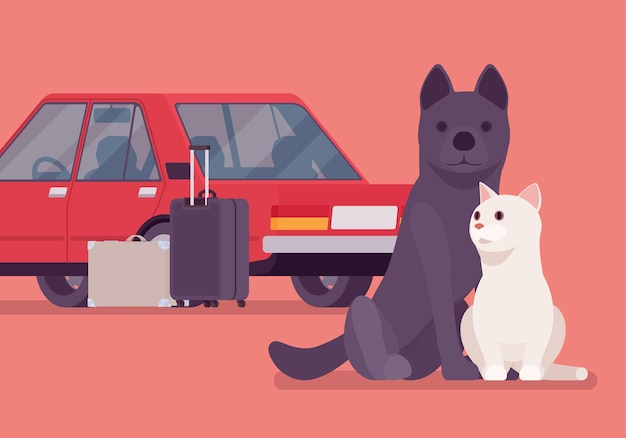 Car travel, road trip with a pet cat and dog