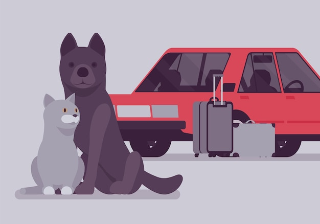 Car travel, road trip with pet cat and dog