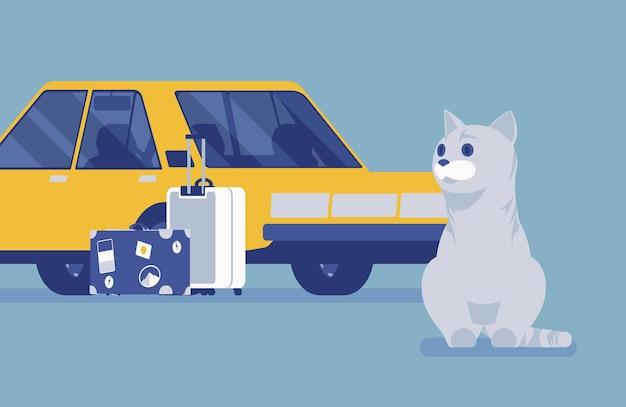 자동차 여행, 애완 고양이와 함께하는 여행