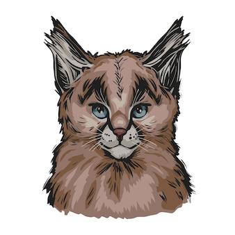 カラカルの赤ちゃん、エキゾチックな動物の肖像画は、スケッチを分離しました。手描きイラスト。