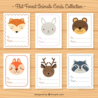 Card collection of beautiful animals in flat design