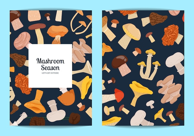 Card set with place for text with cartoon mushroom set