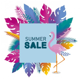 Card of summer time with flamish and tropical leaves plants