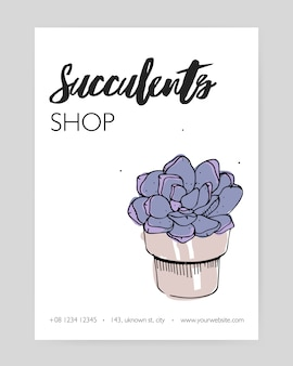 Card template with hand drawn echeveria growing in clay pot and place for text on white