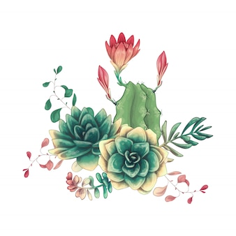 Card with cactuses and succulents set