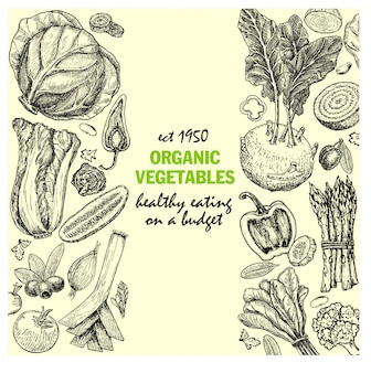 Card  with ink hand drawn vegetables and spice sketch. vintage healthy food illustration. rganic vegetables