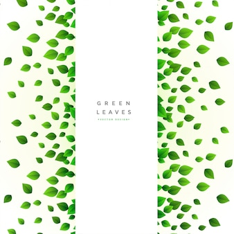 Card with scattered green leaves