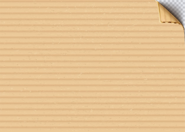 Cardboard paper with curled edge realistic vector background. clear craft paper sheet close up illustration. old corrugated carton blank surface texture. beige paperboard backdrop