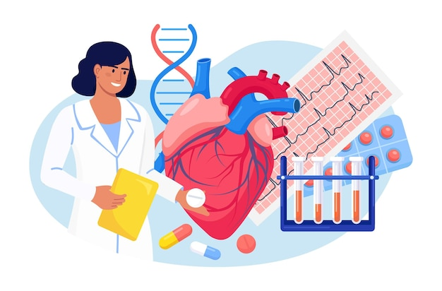 Кардиология. кардиолог исследует сердце человека. врач лечит болезни сердца, проверяет сердцебиение и пульс пациента, кардиограмму, диагностирует инсульт. медицинское обследование сердечно-сосудистого давления