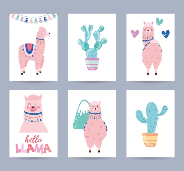 Cards set with llama and cactus