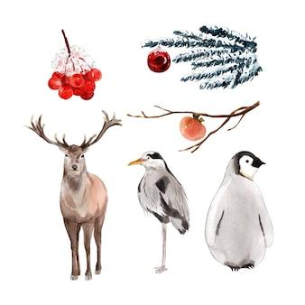 カリブー、鳥、ペンギンの装飾的な使用のための水彩デザインイラスト。