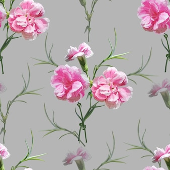 Carnation flower seamless pattern