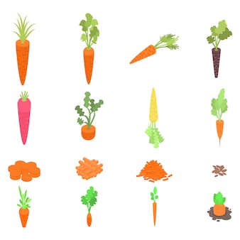 Carrot icons set, isometric style