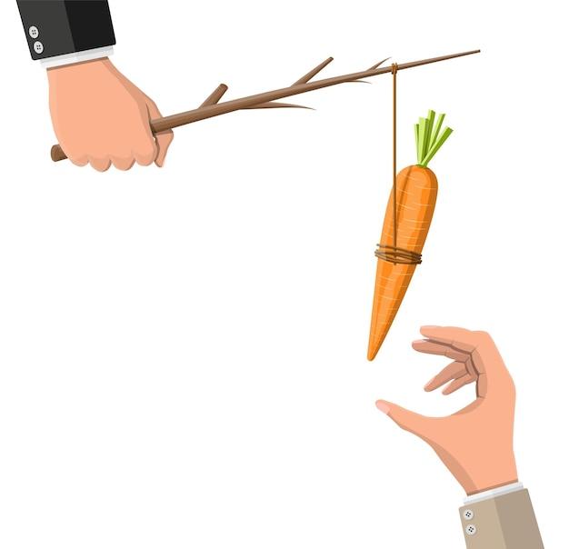 Морковь на палочке в руке. метафора концепции мотивации, стимула, стимула и достижения цели. деревянная палка с подвешенной морковкой