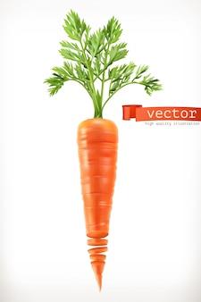 당근. 야채 3d