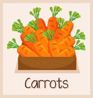 Carrot in the wooden box