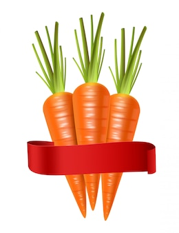 Carrots realistic isolated