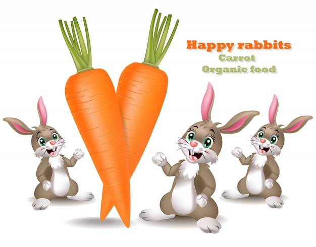 Carrots with happy rabbits background
