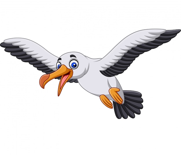 Cartoon albatross bird flying