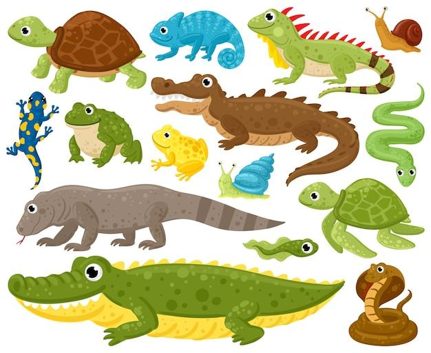 만화 양서류와 파충류. 뱀, 파충류, 양서류, 개구리, 이구아나, 파이썬 벡터 삽화 세트. 야생 파충류와 양서류. 파충류 및 양서류 도마뱀, 동물 야생 동물