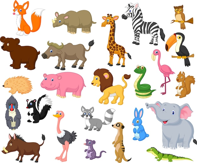 Cartoon animal collection set