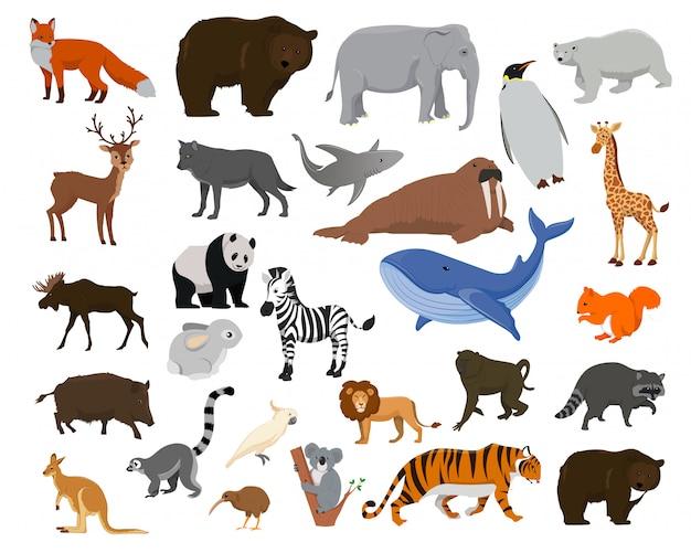 漫画の動物。大きなコレクション海の動物、野生動物
