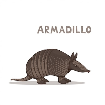 A cartoon armadillo