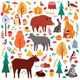 漫画の秋の動物。かわいい森の鳥や動物、ムースアヒルのオオカミ、リス、野生の森の動物のイラストアイコンセット。アライグマとブタ、ウサギ、木の森、鳥とクマ