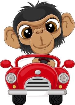 Мультяшный малыш шимпанзе за рулем красной машины Premium векторы